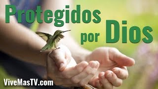 Protección de Dios en el día de la angustia | Palabra de Vida