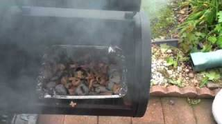 BBQ, Grilling, Slow Smoke ribs (indirect and fire box style) Slow smoked chicken wings