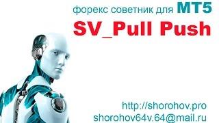 Форекс советник SV_Pull Push_MT5_v2-13