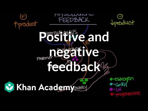 Physiological concept of positive and negative feedback | Behavior | MCAT | Khan Academy