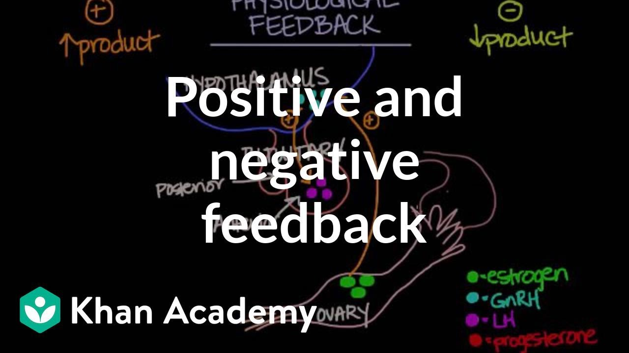 Physiological concept of positive and negative feedback | Behavior ...