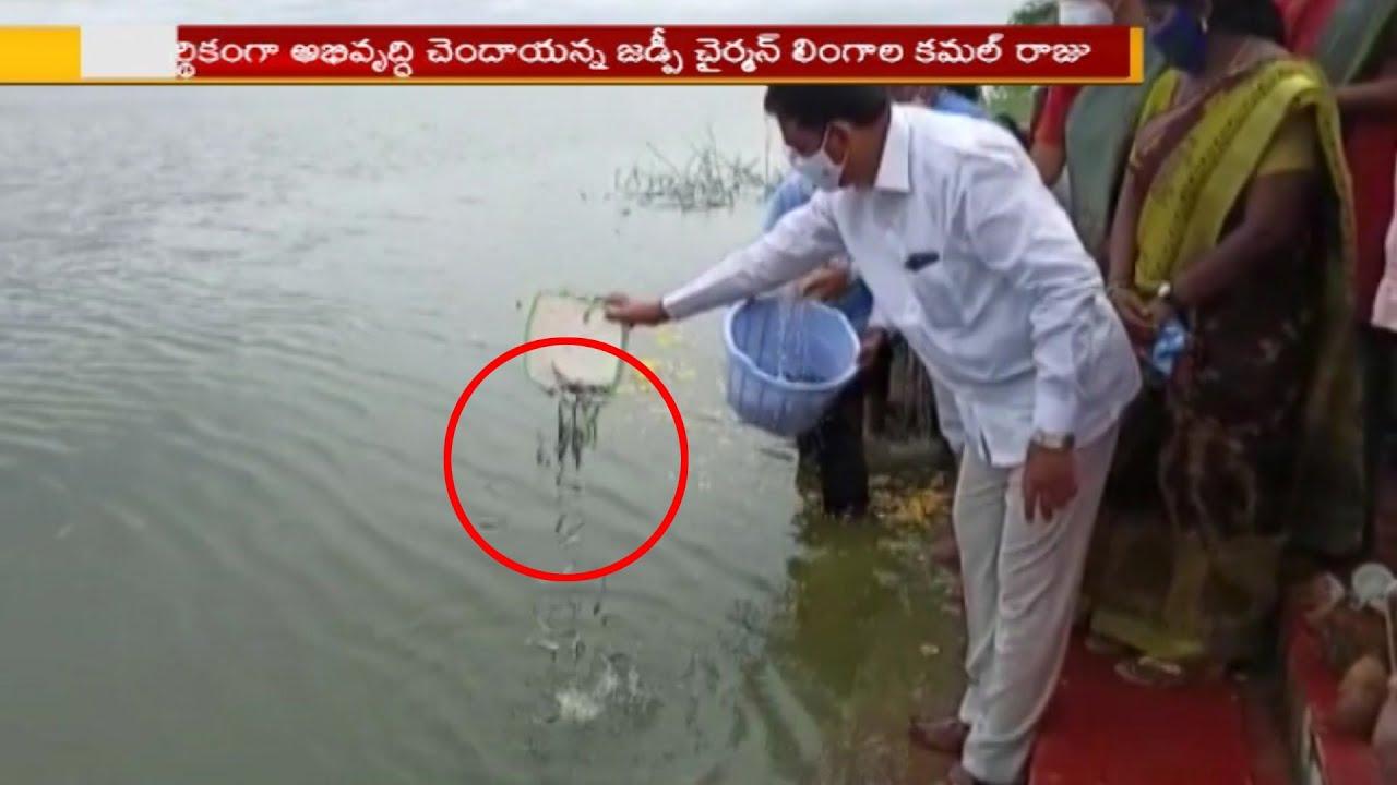 సీఎం కెసిఆర్ ఆధ్వర్యంలో  రాష్ట్రం లోని అన్ని వర్గాలు...!  | KCR | 99TV Telugu