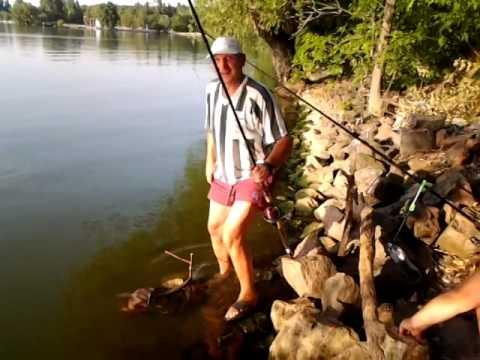 отдых с рыбалка кировоградской области форум