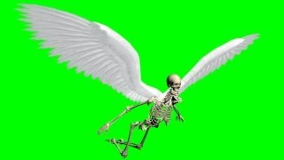 flying skeleton with moving wings - green screen effect