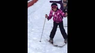 Elaven skiing