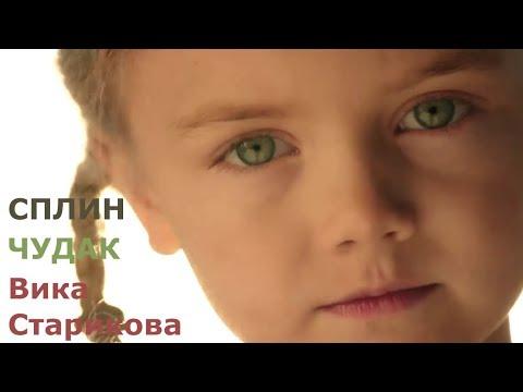 Чудак - СПЛИН | Вика Старикова