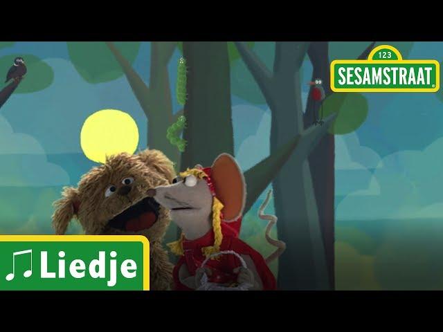 Roodkapje - Kinderliedje - Sesamstraat