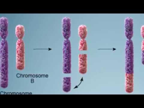 UNAM crea método para detectar tempranamente cáncer - UNAM Global