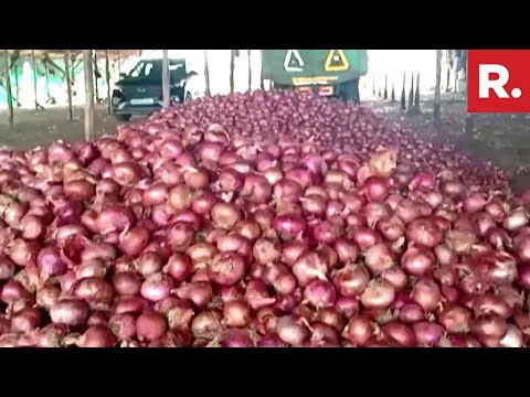 Onion Quality And