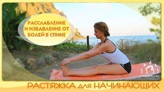 Растяжка для начинающих / Расслабление, развитие гибкости и избавление от болей в спине(Комплекс упражнений, направленный на развитие гибкости ног и спины, на укрепление позвоночника, устранение..., 2014-09-14T08:52:57.000Z)