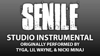 Senile (Cover Instrumental) [In the Style of Young Money: Tyga, Lil Wayne, & Nicki Minaj]