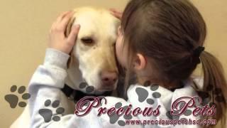 Precious Pets Video | Pet Care In Sioux Falls