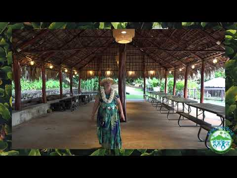"Keiki O Ka Aina Family Learning Centers | ""Mele of My Tutu E"" Dance Tutorial"