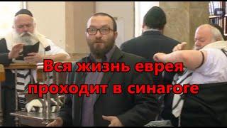 Вся жизнь еврея проходит в синагоге Глава Торы Ки Тиса