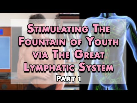 Stimulating The Fountain of Youth via The Great Lymphatic System Part 1 | Dr. Robert Cassar