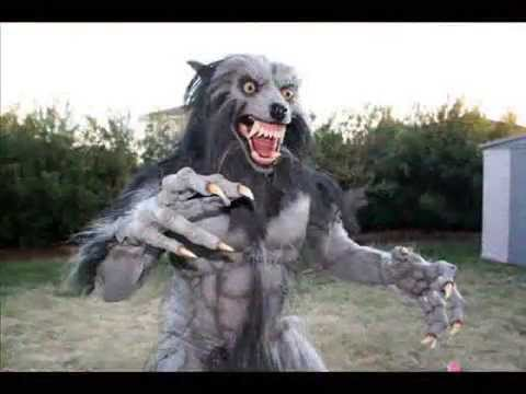 Werewolf Costume 2010 : costumes wolf  - Germanpascual.Com