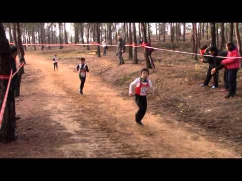 Final Individual Cross Tudela 2015 Benjamin Masculino