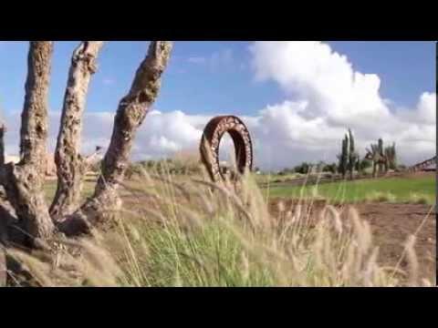 Marrakech Welcomes Outdoor Sculptures Park