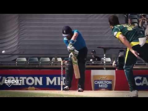 Haddin's final summer of ODI heroics