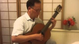 NHƯ CÁNH VẠC BAY -- Like A Flying Crane -- Trịnh Công Sơn