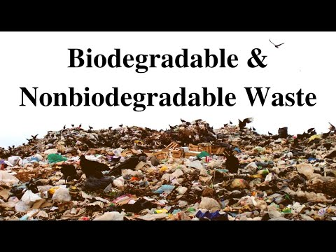 What is Bio-degradable and Non-biodegradable Waste?