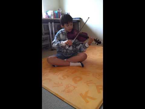 Darren's violin