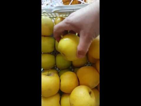 Яблоки сезонные красные, желтые и зеленые высший сорт Иран 2