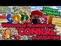 Video de Conkal