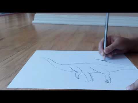 Speed drawing a sauropod