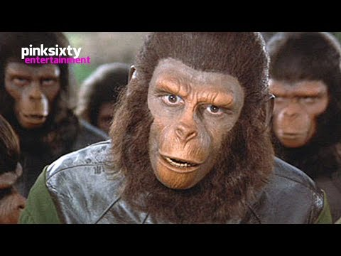 Planet of the Apes  Roddy McDowall  Pinksixty Entertainment