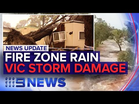 News Update: NSW Rain, Melbourne Sinkhole | Nine News Australia
