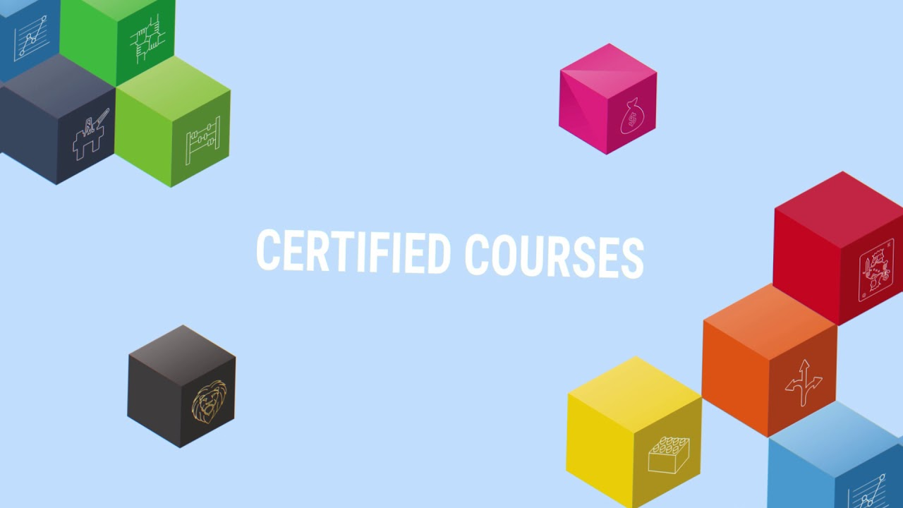Lean Six Sigma courses in the United States - The Lean Six