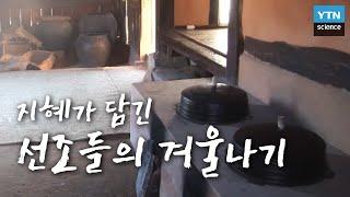 지혜가 담긴 선조들의 겨울나기 / YTN 사이언스