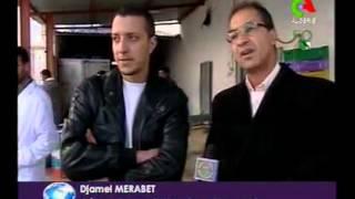Algerie:les vaches algerienne