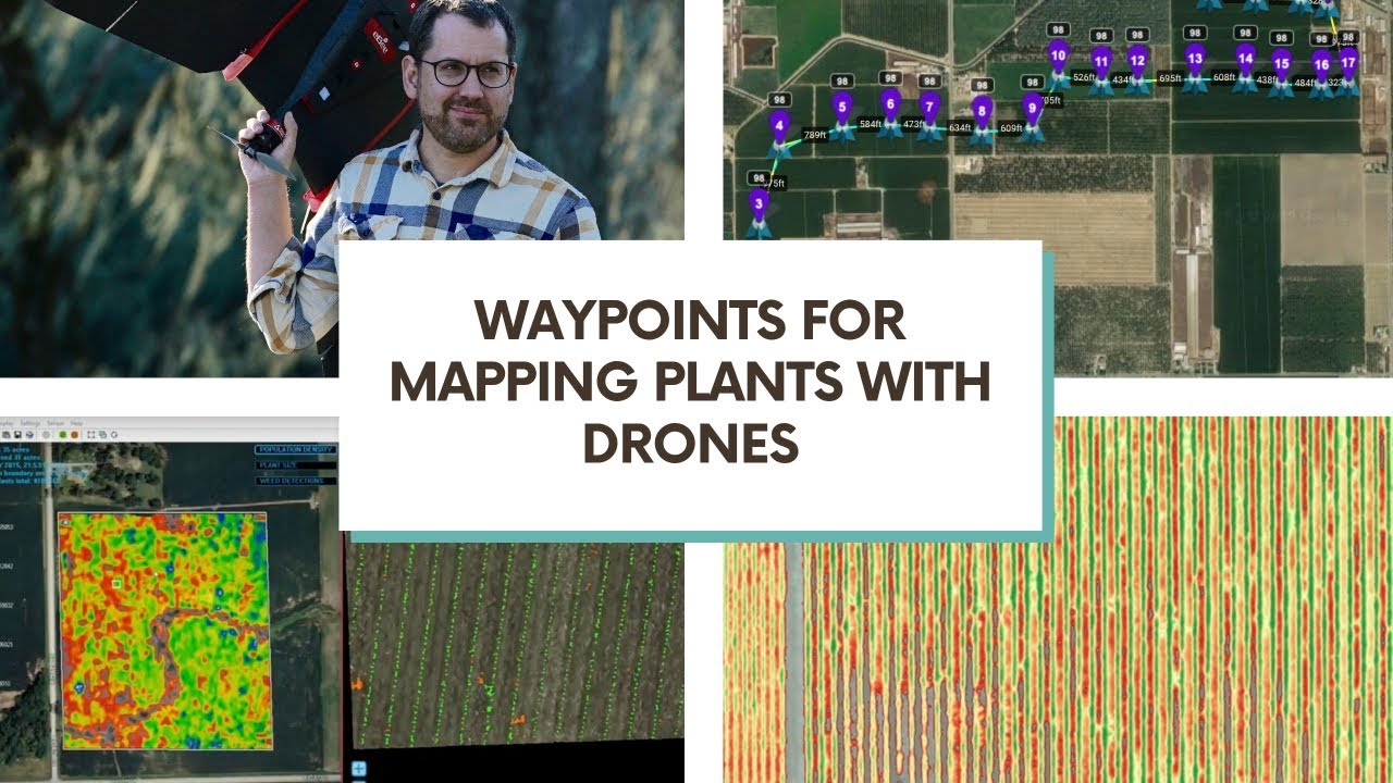 Drone waypoints as alternative tools for mapping vegetation