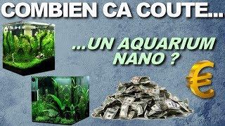 COMBIEN CA COUTE  un aquarium nano ?