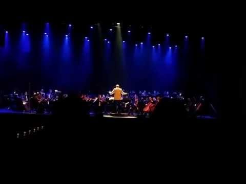 Danny Elfmans-The Batman Theme Live