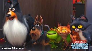 Тайная жизнь домашних животных - ТВ-ролик на Русском | 2016 | 1080p