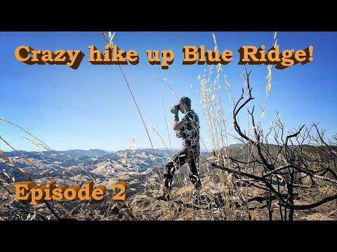 A BRUTAL HIKE UP BLUE RIDGE || EPISODE 2 - CACCIA OUTDOORS CALIFORNIA HUNTING 2019