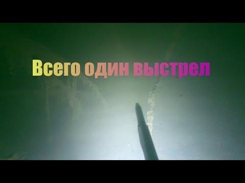 Подводная охота - Всего один выстрел