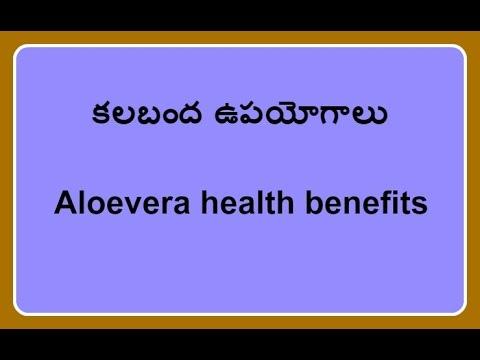 Aloevera Benefits In Telugu