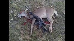 300 BLK drops deer instantly