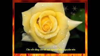 Trường Ca Thánh Nữ Ðồng Trinh Maria - Ðoạn 7,8,9,10