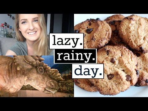 Job Interview, Healthy Cookies & Jurassic World   Lazy Rainy Day