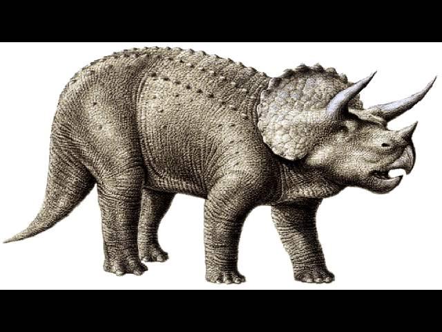 carbon dating dinosaurer