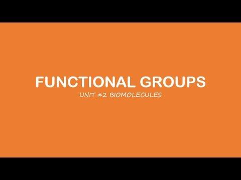 AP Biology: Functional Groups