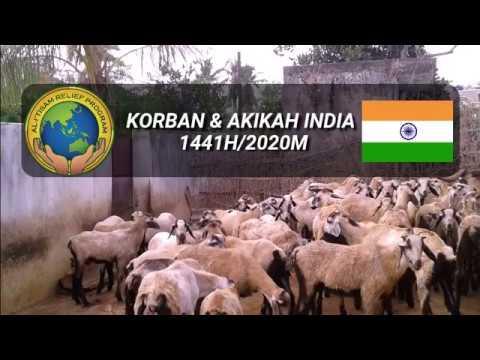SALAAM INDIA- IBADAH KORBAN/AKIKAH  2019 1440H