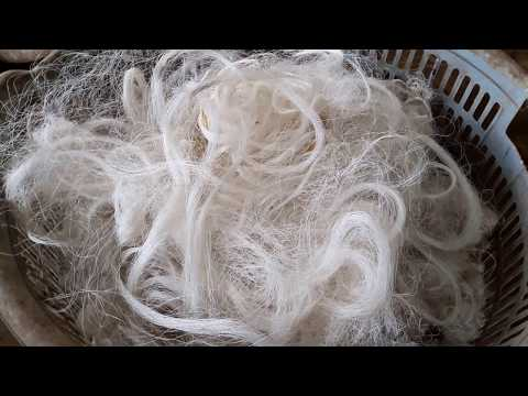 How is Silk made?