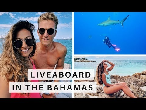 Scuba Diving In The Bahamas | Sharks, Sailing & A Trip To A&E! | Go Live Explore