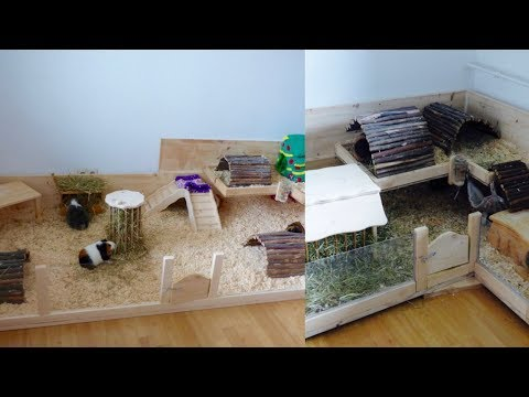 What You Need To Know About Guinea Pig Cages
